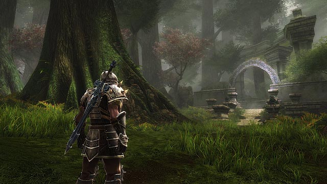 Kingdoms-of-Amalur-world
